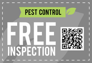 free inspection coupon