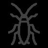 Roaches Pest Control